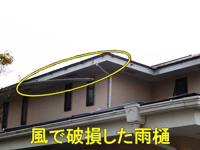 2雨樋風災