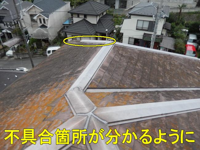 14屋根全体