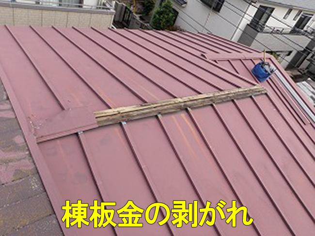 20トタン屋根剥がれ1