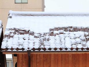 42雪止め:積雪