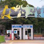 千葉市動物公園ふれあい動物の里